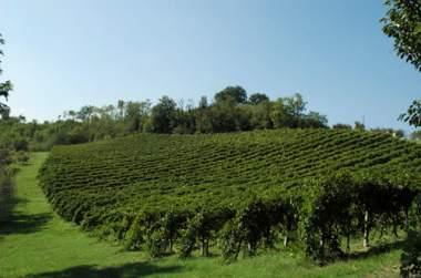 Il castellazzo un agriturismo in provincia di bologna for Piani di campagna in collina